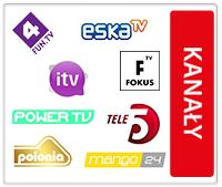Bezpłatne kanały cyfrowej telewizji satelitarnej